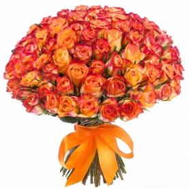 151 Оранжевая Роза фото
