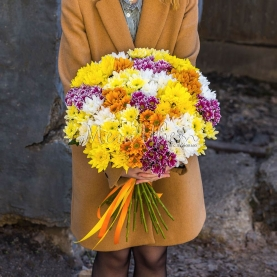 25 Хризантем кустовых фото