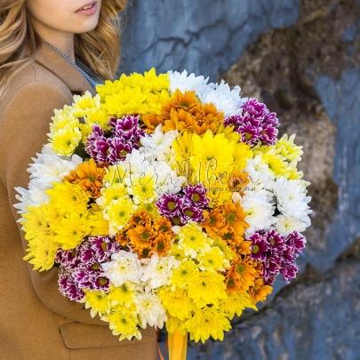 25 Кустовых Хризантем Микс фото