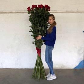 25 Красная Роза (180-200 см.) фото