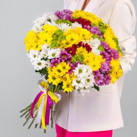 25 Кустовых Хризантем Ромашка Микс фото