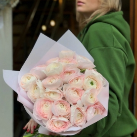 25 Нежно-Розовых Ранункулюсов фото
