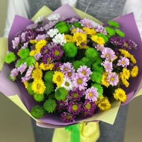 25 Разноцветных Хризантем Сантини фото