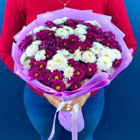 25 Розово-Малиновых Сантини фото