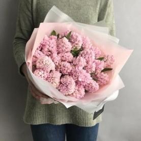 25 Розовых Гиацинтов фото