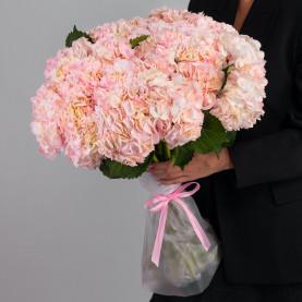 25 Розовых Гортензий фото