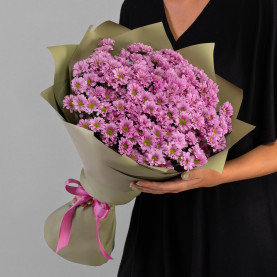25 Розовых Сантини Ромашка фото