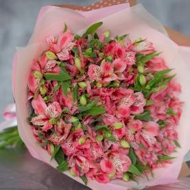 25 Розовых Альстромерий в упаковке фото