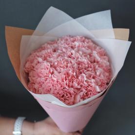 25 Розовых Гвоздик фото