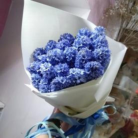 25 Синих Гиацинтов фото