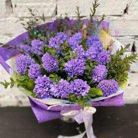 25 Фиолетовых Гиацинтов фото