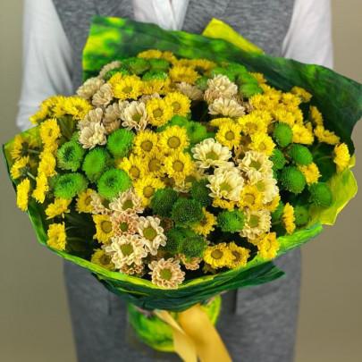 25 Желтых и Зеленых Хризантем Сантини фото