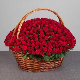 251 Красная Роза (40 см.) в корзине фото