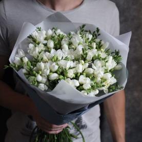 75 Белых Фрезий фото
