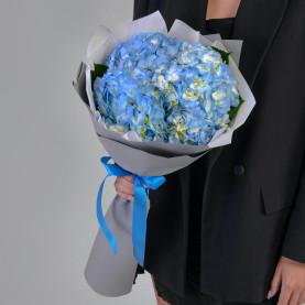 3 Голубые Гортензии фото