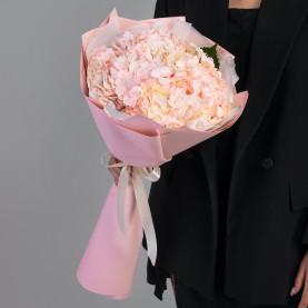 3 Розовые Гортензии фото