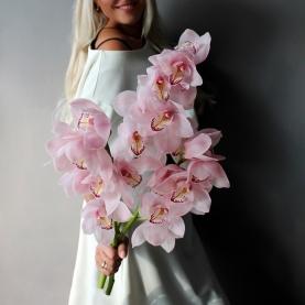 3 Ветки Розовой Орхидеи фото