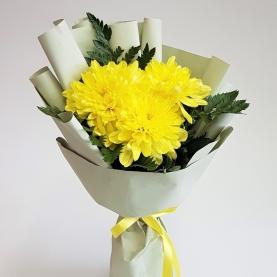 3 Желтые Хризантемы фото
