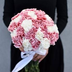 31 Белая и Розовая Гвоздика фото