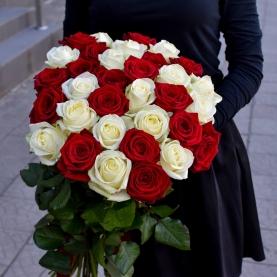 35 Бело-Красная Роза (70/80 см.) фото