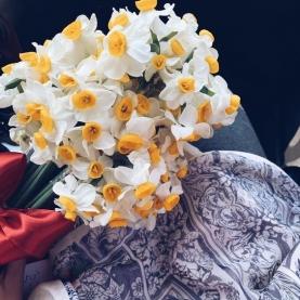 31 Белый Нарцисс фото