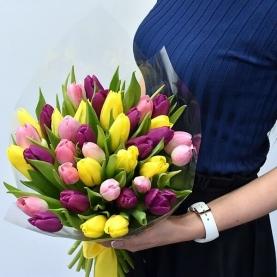 33 Разноцветных Тюльпана фото
