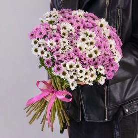 35 Белых и Розовых Сантини Инь-Янь фото