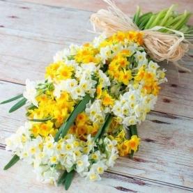 35 Белых и Желтых Кустовых Нарциссов фото