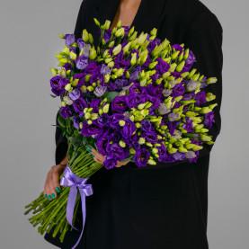35 Фиолетовых Эустом фото