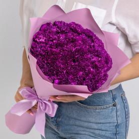 35 Фиолетовых Гвоздик фото