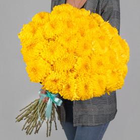 35 Желтых Хризантем Бигуди фото