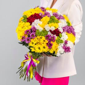 35 Кустовых Хризантем Ромашка Микс фото