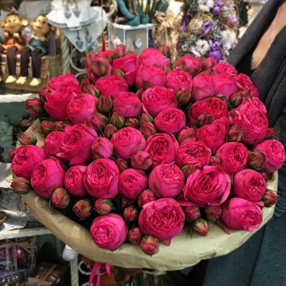 35 Малиновых Роз Кустовых Пионовидных фото