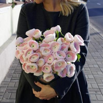 35 Нежно-Розовых Ранункулюсов фото