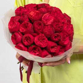 35 Пионовидных Красных Роз (40 см.) фото
