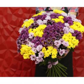 35 Разноцветных Кустовых Хризантем фото