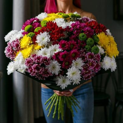 35 Кустовых Хризантем Микс фото