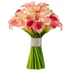 35 Розовых Калл фото