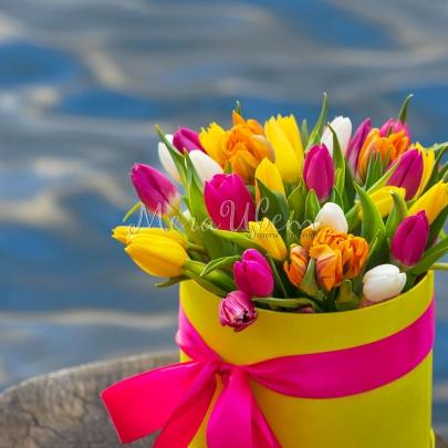 35 Тюльпанов в коробке фото