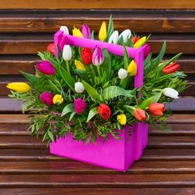 35 Тюльпанов в ящике фото