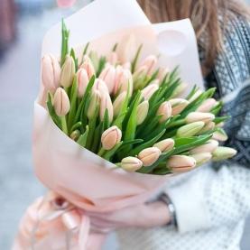 35 Розовых Тюльпанов фото