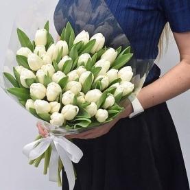 35 Белых Тюльпанов фото