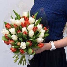 45 Красных и Белых Тюльпанов фото