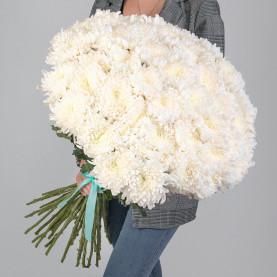45 Белых Хризантем Бигуди фото