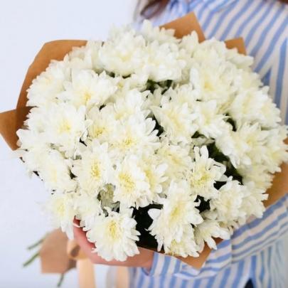5 Белых Хризантем Кустовых фото