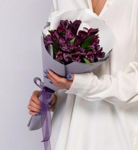 5 Фиолетовых Альстромерий