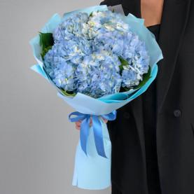 5 Голубых Гортензий фото