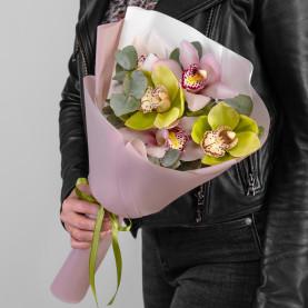 5 Орхидей Микс фото