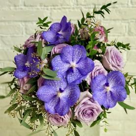 Орхидея Ванда И Розы