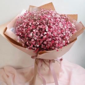 9 Ярко-Розовых Гипсофил фото